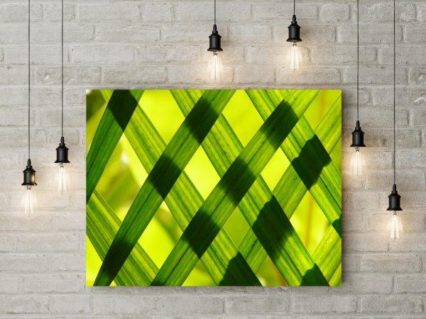 Green Leafs 1