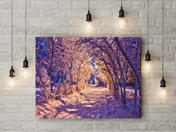 Alley In Winter 1