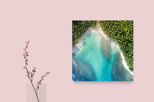 Beautiful Palms Beach And Sea 1