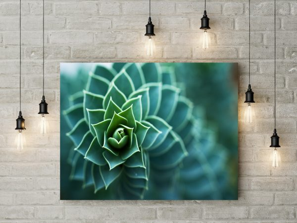 Beautiful Plant Close Up 1