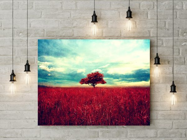 Beautiful Red Tree And Grass 1