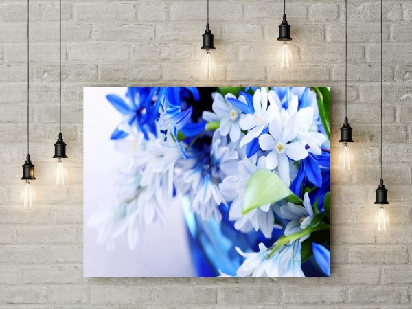 Beautiful White And Blue Flowers 1