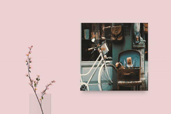 Bicycle Vintage Photo 1