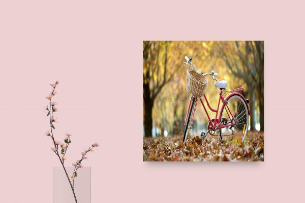Bike In Street Autumn 1