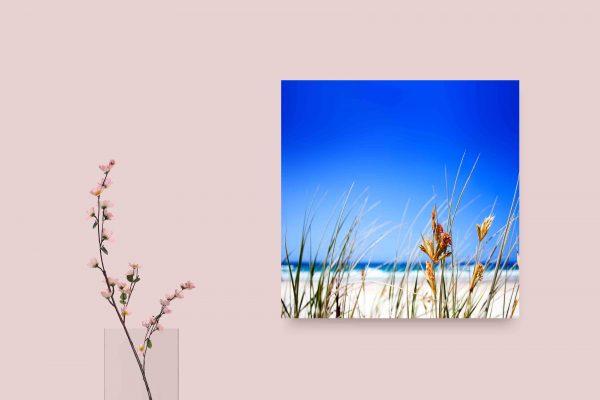 Clear Beach Sky 1