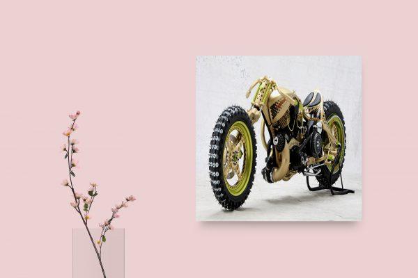 Customizing Motorbike 1
