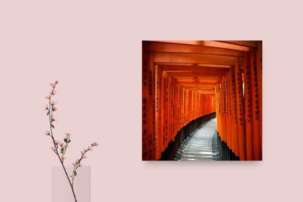 Fushimi Inari Shrine Tori Gates Kyoto Japan 1