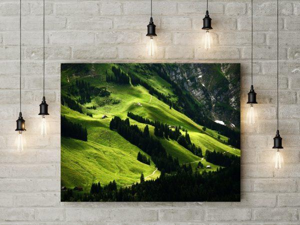 Landscape In Switzerland 1