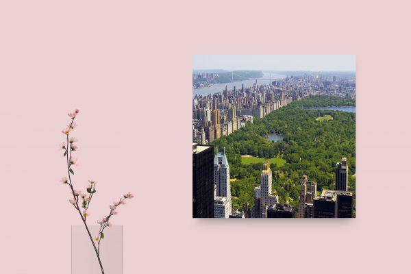 Manhattan New York Central Park 1