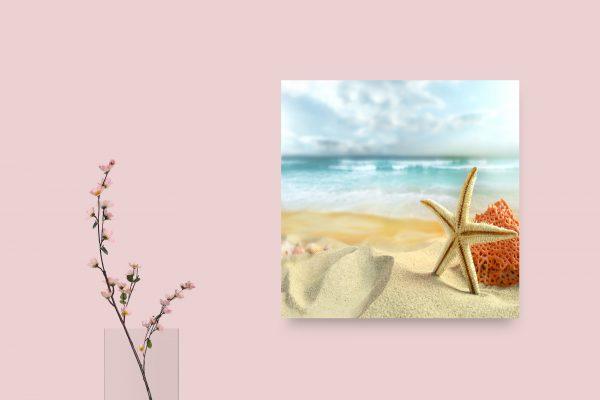 Starfish In Sand 1