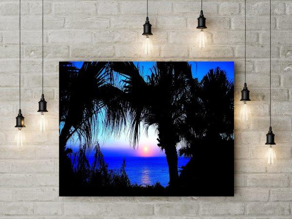Sunrise In Palm Beach 1