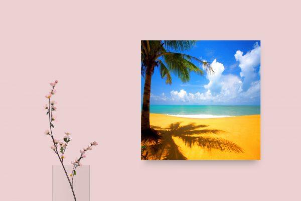 Sunshine On Beach 1