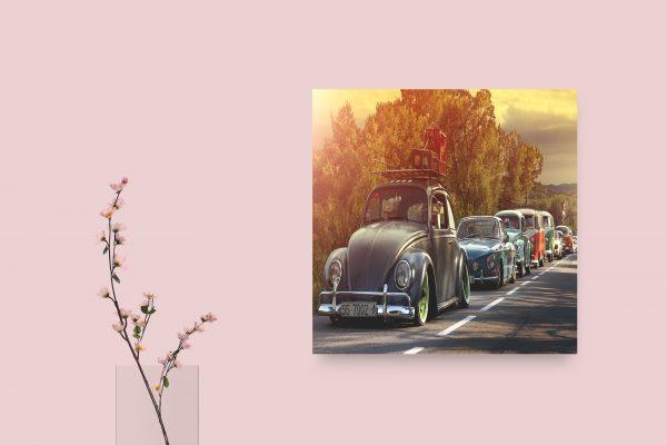 VW Van, Beetle 1